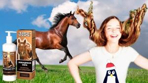 шампунь лошадиная сила инструкция